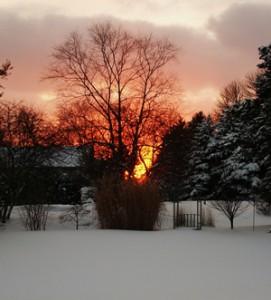 winter 002_format