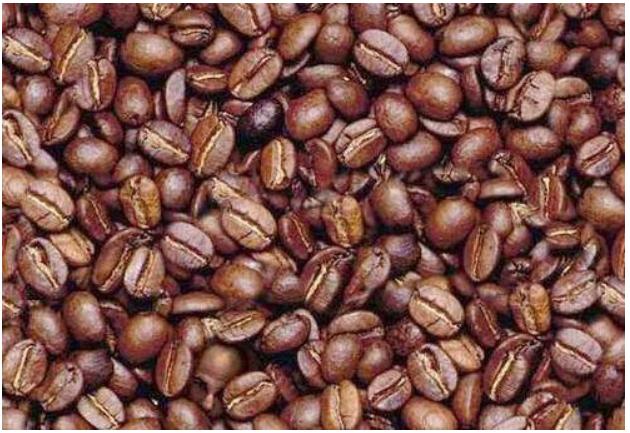 coffebeanman
